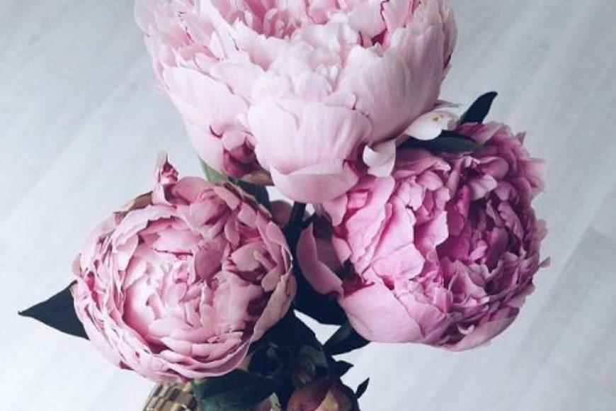 Flores para tu boda/FLOWERS FOR YOUR WEDDING